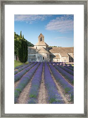 Senanque Abbey And Lavender Fields - Provence - France Framed Print by Matteo Colombo