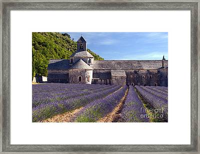 Senanque Abbey Framed Print by Bob Phillips