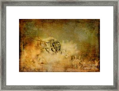Send The Bees Love Framed Print
