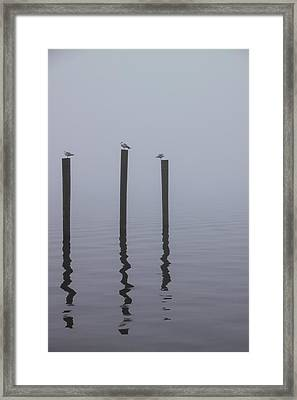 Seneca Lake Morning Mist Framed Print