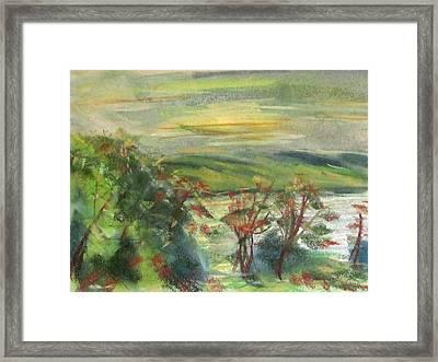 Seneca Lake Summer Morning Framed Print by Denny Morreale