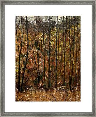 Sensing Movement Framed Print by Lisa Aerts