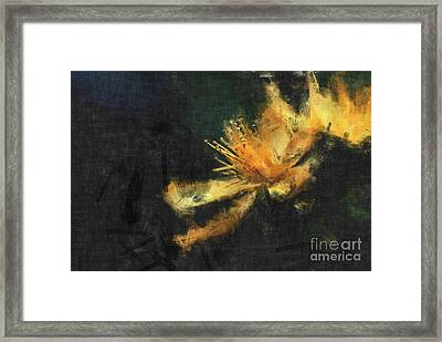 Sensitivity Framed Print by Aimelle