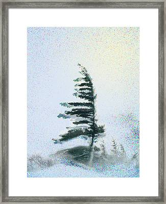 Sentinal At The Northern Treeline Framed Print by Alice Ramirez