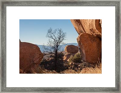 Sentinal Framed Print by Beverly Parks