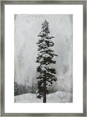 Sentinel Framed Print by Marilyn Wilson