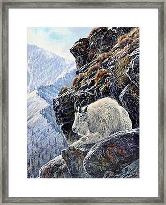 Sentinel Of The Canyon Framed Print