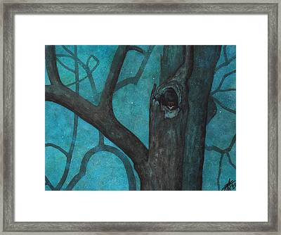 Sentinel Or Great Horned Owl In Cottonwood Tree Framed Print