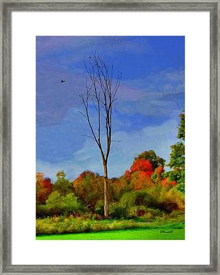 Sentinel Tree Framed Print