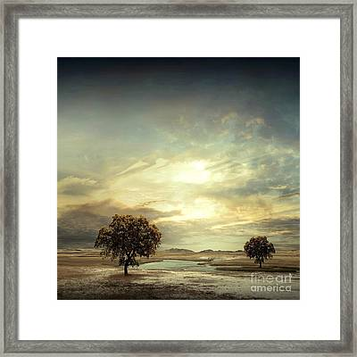 Separating River Framed Print by Franziskus Pfleghart