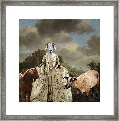 Separating The Sheep From The Goats Framed Print by Terry Fleckney