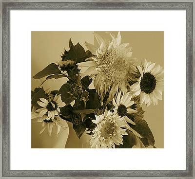 Sepia Garden Sunflower Bouquet Framed Print
