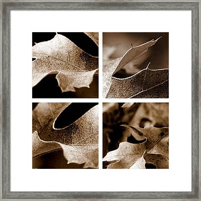 Framed Print featuring the photograph Sepia Leaf Collage by Lauren Radke