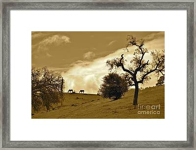 Sepia Of Two Horses Framed Print