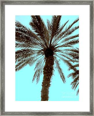 Framed Print featuring the photograph Sepia Palm by Jeanne Forsythe