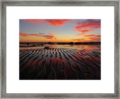 Framed Print featuring the photograph September Brilliance by Dianne Cowen