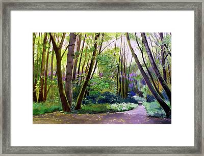September In Springbrook Park Framed Print by Melody Cleary