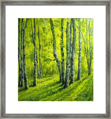 September In The Woods Framed Print
