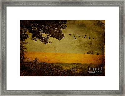 September Framed Print by Lois Bryan
