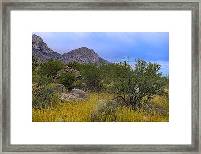 September Oasis No.1 Framed Print by Mark Myhaver