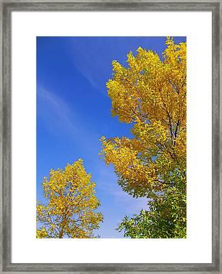 September Sky Framed Print by Debi Dmytryshyn