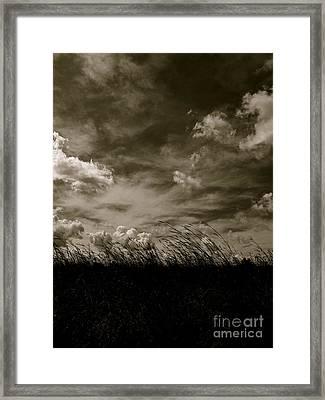 September Sky Framed Print by Tim Good