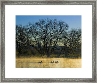 Sepulveda Dam At Dawn On New Year's Day 2015 Framed Print