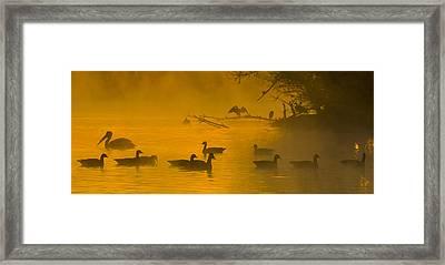 Sepulveda Dam Morning Framed Print