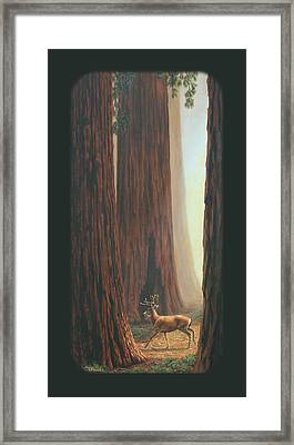 Sequoia Blacktail Deer Phone Case Framed Print