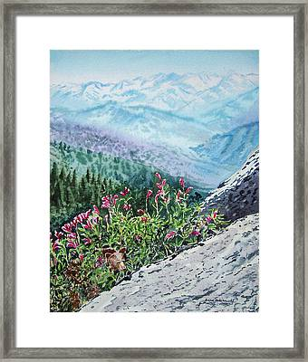 Sequoia National Park Framed Print by Irina Sztukowski