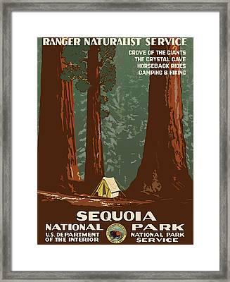 Sequoia National Park Framed Print