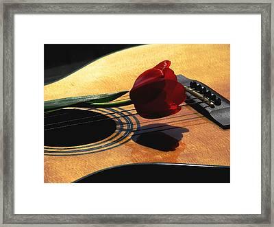 Serenade Framed Print by Angela Davies