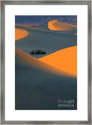 Death Valley Serenade In Light Framed Print by Bob Christopher