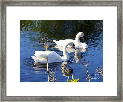 Framed Print featuring the photograph Serenade Of  Love by Lingfai Leung