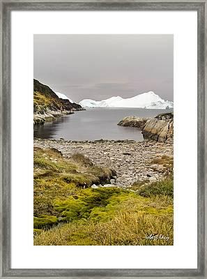 Serene But Dangerous Framed Print