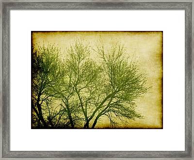 Serene Green 2 Framed Print by Wendy J St Christopher