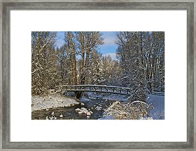 Framed Print featuring the photograph Serene by John Babis