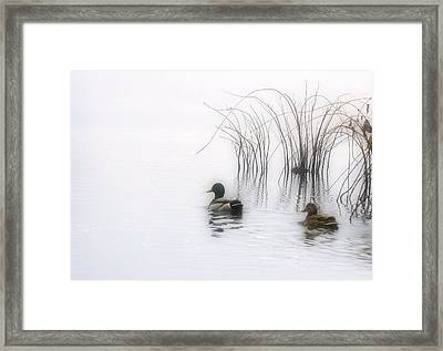 Serene Moments Framed Print