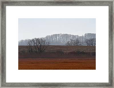 Serene Parker River National Wildlife Refuge Framed Print