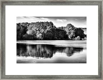 Serene Reflection Framed Print by Jay Harrison