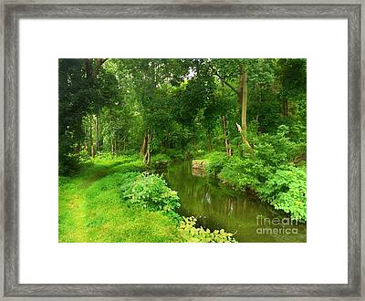 Serene Reflections Framed Print by Becky Lupe