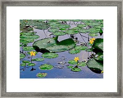 Serene To The Extreme Framed Print by Frozen in Time Fine Art Photography