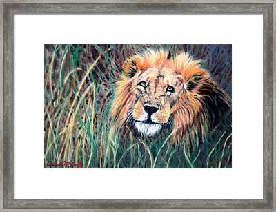 Serengeti Ruler Framed Print