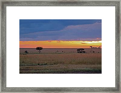 Serengeti Sunrise Framed Print by Tony Murtagh