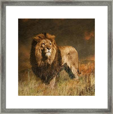 Framed Print featuring the photograph Serengeti Sunset by Brian Tarr