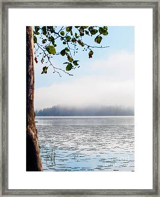 Serenity At The Lake Framed Print by Ismo Raisanen