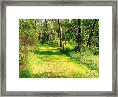 Framed Print featuring the photograph Serenity by Becky Lupe