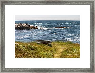 Serenity Bench Framed Print by Bev Conover