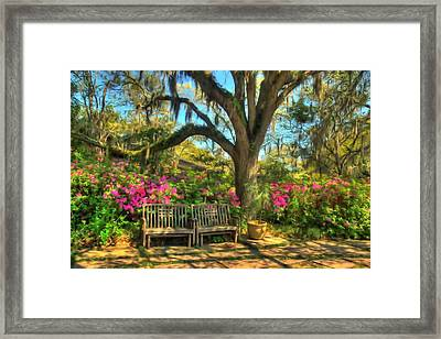 Framed Print featuring the photograph Serenity Bench by Ed Roberts