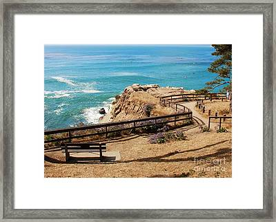 A Place To Relax Framed Print by Claudia Ellis